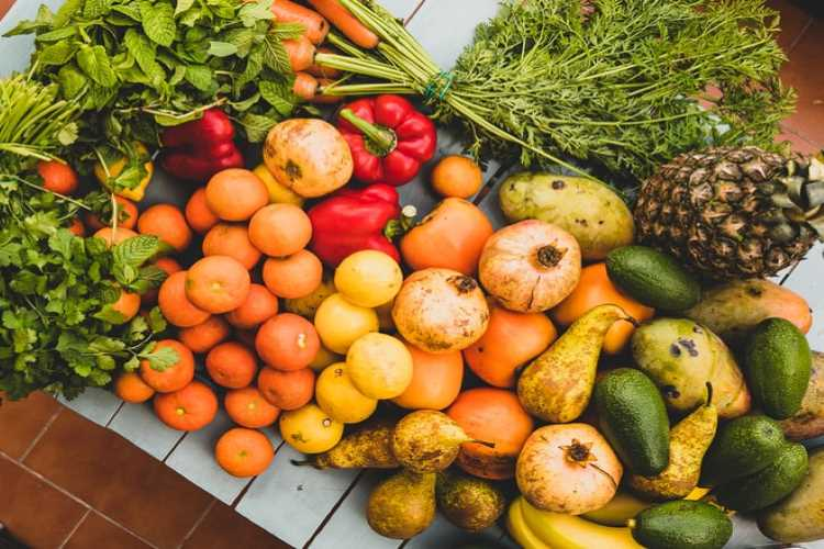 Why do we Need Nutrients in Food